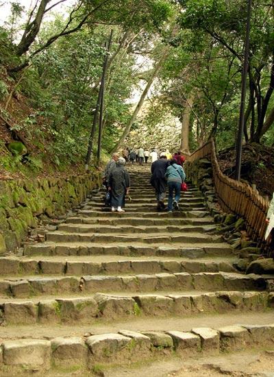 再转搭东西线到『山科』之后,转『东海道本线』至『彦根』,此段路将近
